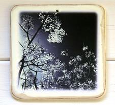 הדפס על עץ, מילי בר יונה