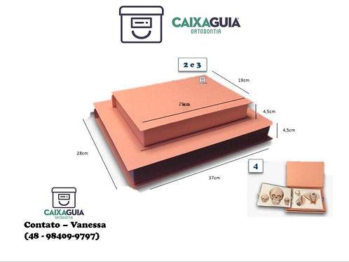 Caixa Guia ORTODONTIA CORRETIVA - MÉDIA (frente e verso)