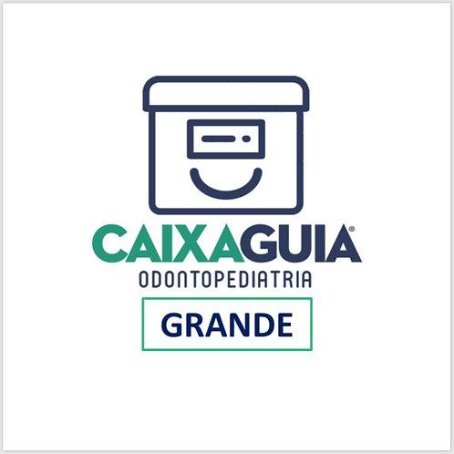 Caixa Guia Odontopediatria GRANDE