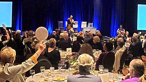 AIBF_Gala_Auction13_preview_edited.jpg