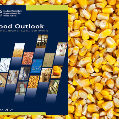 FAO forecasts buoyant global food trade despite challenges