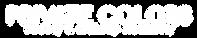 PCA logo (white)-01.png