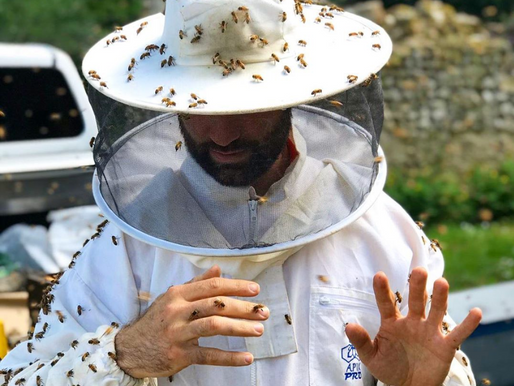 5 idées de cadeaux pour un apiculteur