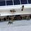 Thumbnail: Porte de ruche connectée