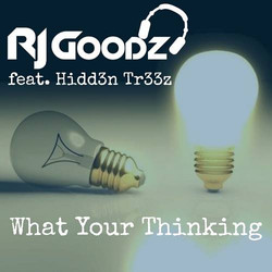 RJ Goodz - What Your Thinking