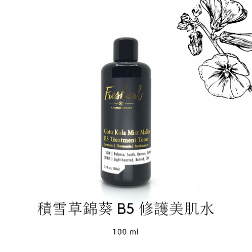 Gotu Kola Mixt Mallow B5 Treatment Toner