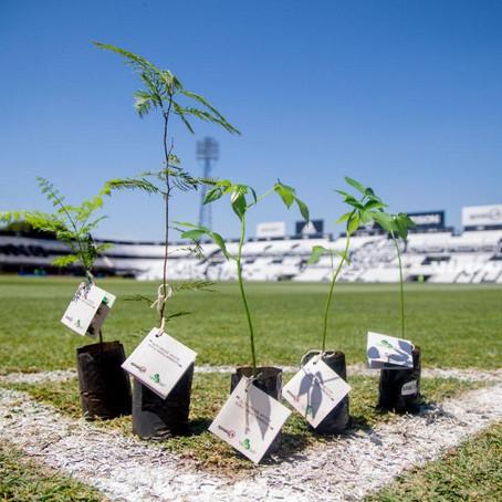 Una campaña para apostar por el medio ambiente