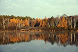 Wisconsin_WebImage_1.jpg