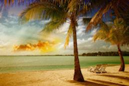 Florida_WebImage_2.jpg
