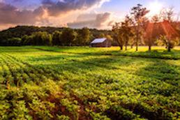 Kentucky_Image_2.jpg