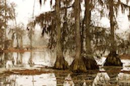 Louisiana_Image_1.jpg