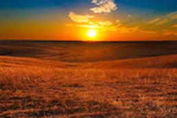 Kansas_WebImage_1.jpg