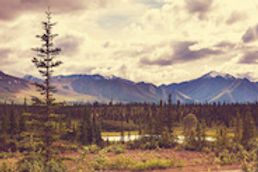 Alaska_WebImage_2.jpg
