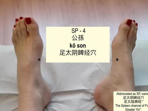 Il Punto SP4