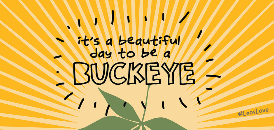 """_________ """"It's a Great Day to be a Buckeye"""" Mural"""