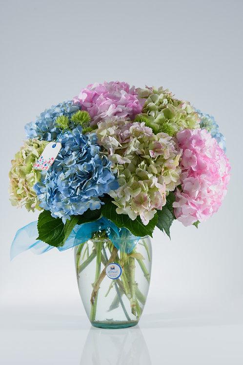 Exportación floral