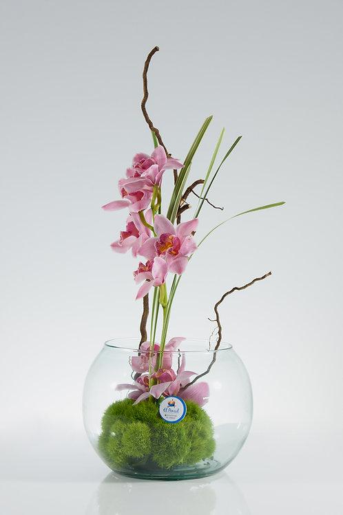 Zen de orquídeas