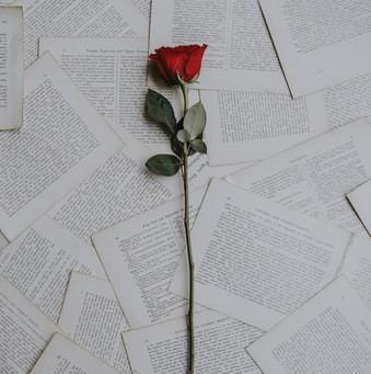 Love Is In The Air | Five Romance Tropes I Love