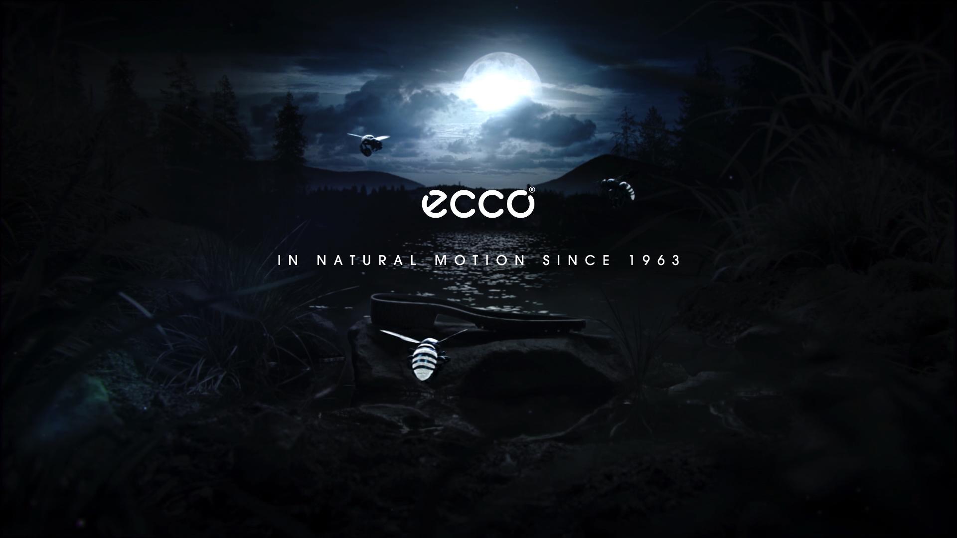 ECCO HYBRID