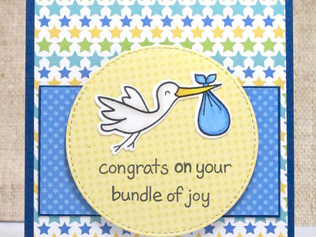 Stork Baby Boy Card