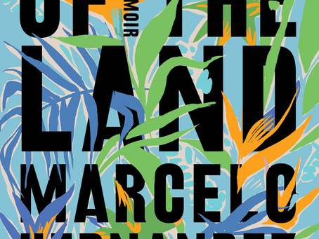 Review: Marcelo Hernandez Castillo's Children of the Land