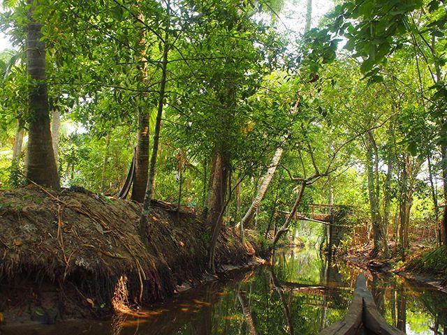 Kerala/ Back River Cruise