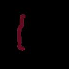 IDN Logo Final 072320.png