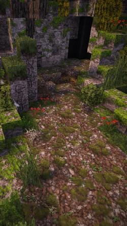 overgrown stonydirt