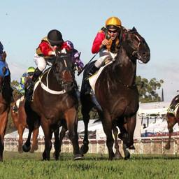 boom racing gallery 13.JPG