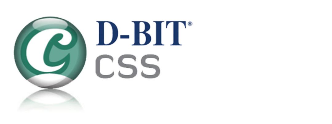 D-BIT CSS