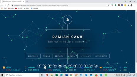 Damianicash