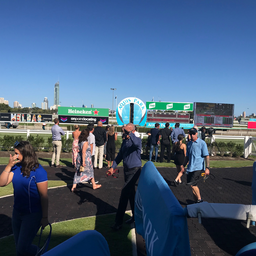 Boom owners on the Winning POst.png