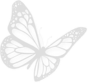 Butterfly 5b.png