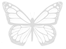 Butterfly 1b.png