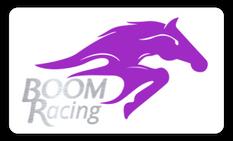 Logo Design Boom Racing.png