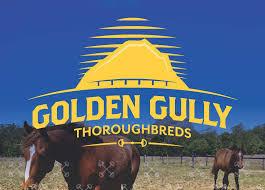 Golden Gully
