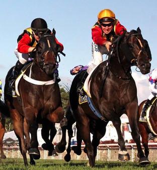 boom racing gallery 5.jpg