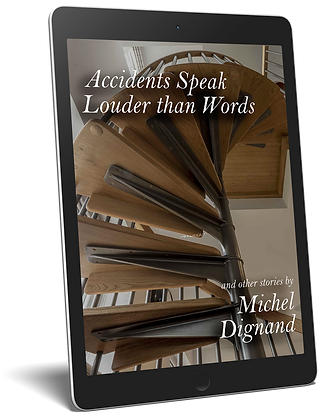 Accidents Speak Louder than Words eReader