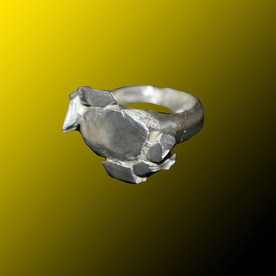 Silver Ring #1011