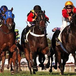 boom racing gallery 9.JPG