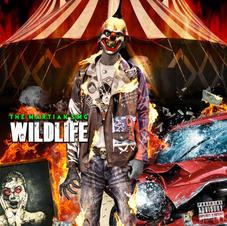Wild Life - 2021