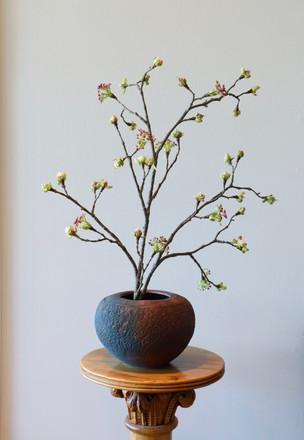 Glazed Over Ceramics Orinda 8 inch raku pot