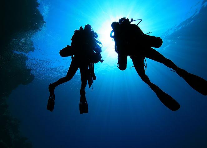 Silhouette di subacquei