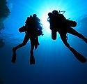 Silhouette de plongeurs
