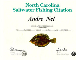 Citation flounder 2013