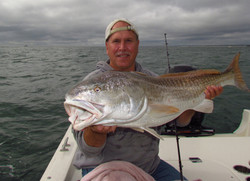 Very Nice Red Drum.
