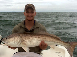 Sept 2014 Red Drum