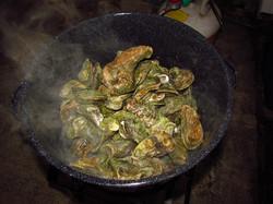 Fresh fresh fresh oysters.