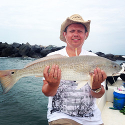 Red drum Aug 2015