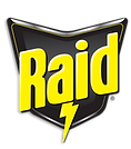 BFD_Raid_Groundswell_Logo.png